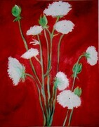 "Queen Annes Lace 18""x24"" oil on canvas"